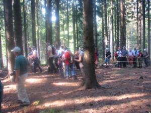 Gozdna pedagogika